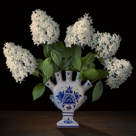 T.M. Glass, 'Hydrangeas in a Dutch Tuliperie', 2017