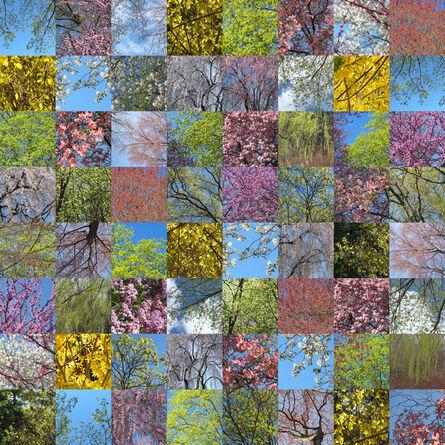 Maria Passarotti, 'Spring Blooms', 2015