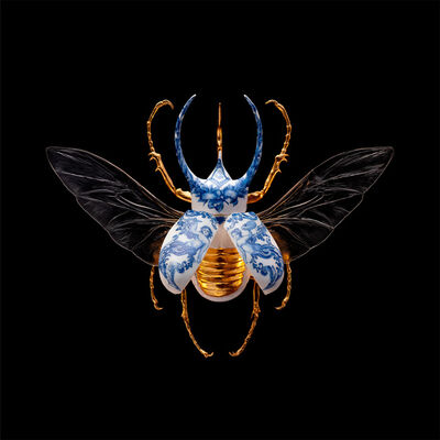 Samuel Dejong, 'Anatomia Blue Heritage Prints, Atlas Beetle Open', 2017-2019