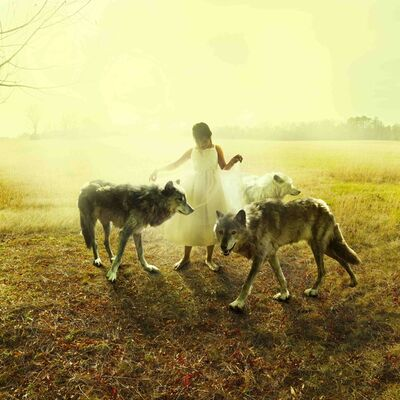 Tom Chambers, 'Middle Light ', 2013