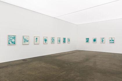 Rob McLeish: Distortions