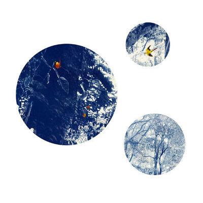 Danie Mellor, 'Climatology', 2015