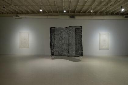 Dana Lynn Louis: Weave