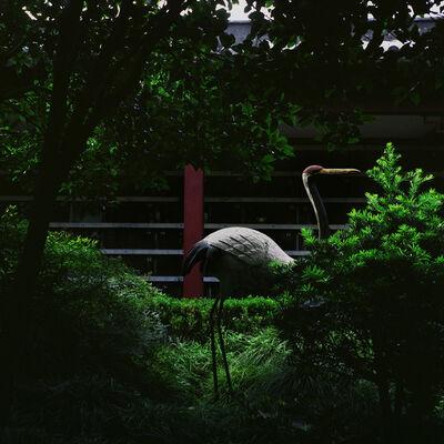 Zhao Jing, 'Cemetery', 2012