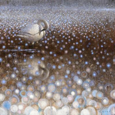 Ewoud De Groot, 'Preening Swan'
