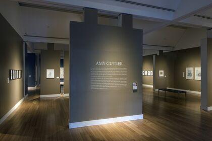Amy Cutler