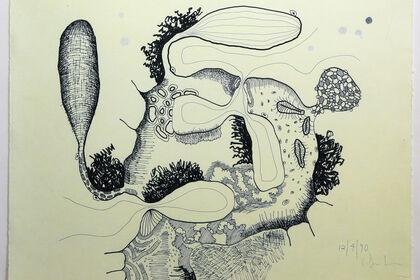 Carroll Dunham: Drawings, 1990 - 2009