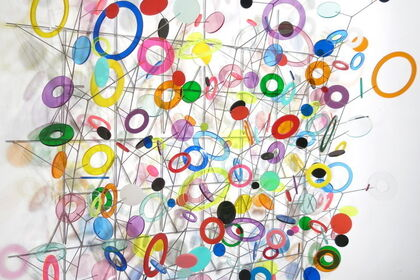 Warren Seelig   Shadowfields - New Work
