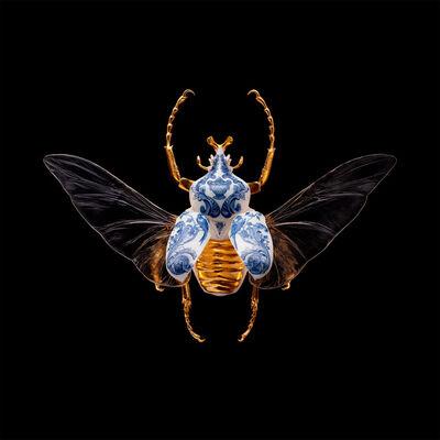 Samuel Dejong, 'Anatomia Blue Heritage Prints, Goliath Beetle Open', 2017-2019