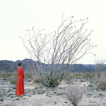 Karin Bubaš, 'Woman and Ocotillo Tree', 2016