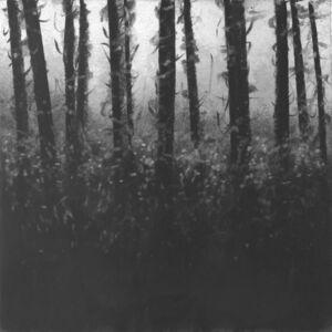 Charles Ramsburg, 'Clearing', 2009