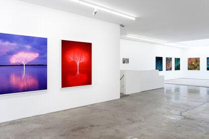 Pontone Gallery   Opening Exhibition
