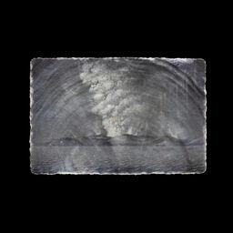 Silverlens