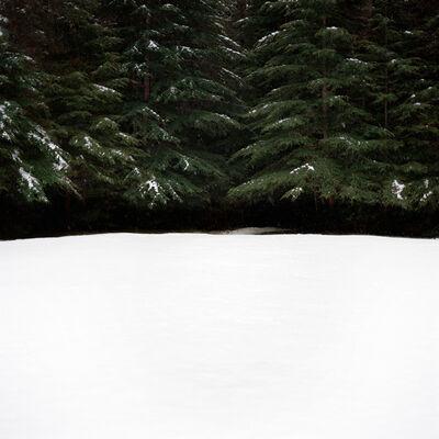 Debra Bloomfield, 'Wilderness 03442-8-12', 2012