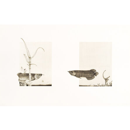 Kana Nemoto, 'dream', 2012