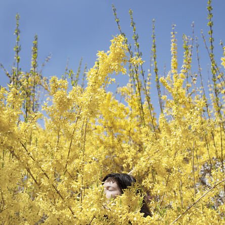 Cig Harvey, 'Claire in the Forsythia', 2010
