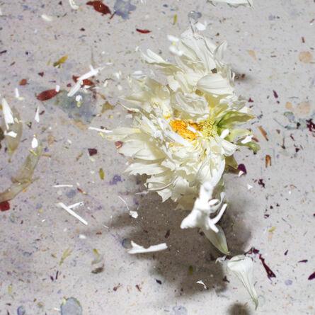 Sharon Neel-Bagley, 'Boiling Crash Number 1', 2015