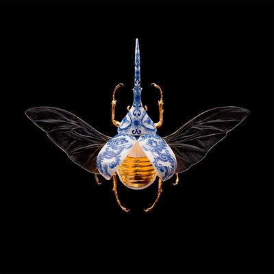 Samuel Dejong, 'Anatomia Parvus Prints, Hercules Beetle Open', 2020