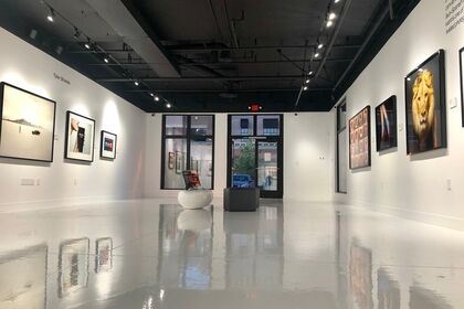 Between the Lines / Contemporary Art Show