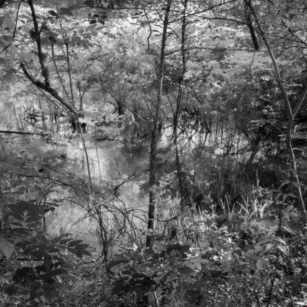 Richard Skoonberg, 'Spring Flood', 2020
