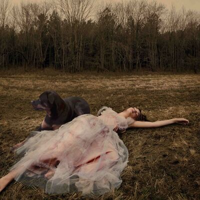 Tom Chambers, 'Prom Gown #1', 2005
