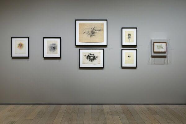 Robert Mapplethorpe The Perfect Medium Los Angeles County Museum Of Art Artsy
