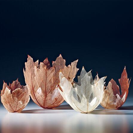 Kay Sekimachi, 'Leaf Bowls', 2012