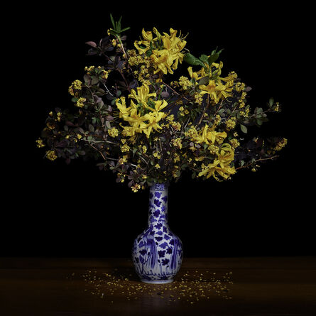 T.M. Glass, 'Yellow Azalea and Barberry in a Blue and White Chinese Vase', 2017