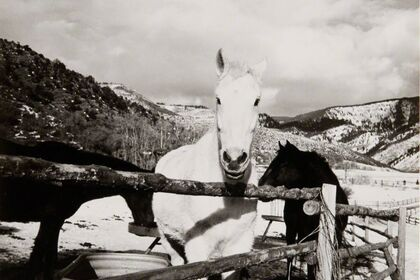 Andy Warhol: The Aspen Photographs