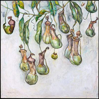 Elli Crocker, 'Pitcher Plants, (Sacred Geometries)', 2008