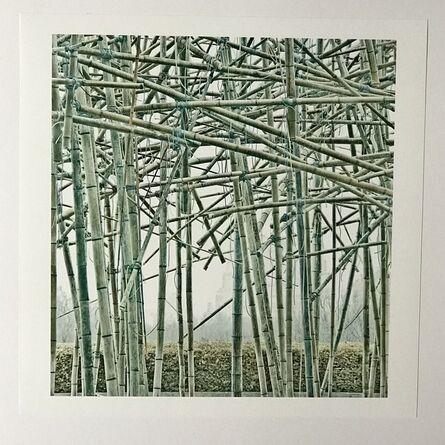 Doug & Mike Starn, 'Big Bambu, BBMet 03.15.2010 K441f', 2010-2011