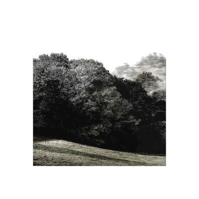 Overlap, 'Trees & Keys - Mix 1.4, Recording 37, 4442 : Print', 2016