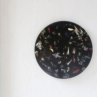 Marcin Rusak, 'Flora Wall Light'