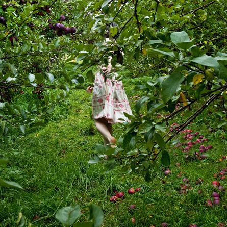 Cig Harvey, 'The Orchard, Ashlinn, Warren, Maine', 2012