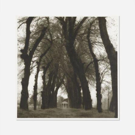 Lynn Geesaman, 'Parc de Canon, France from Poetics of Place.', 1995