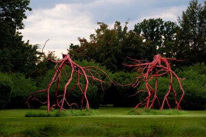 Steve Tobin: Roots
