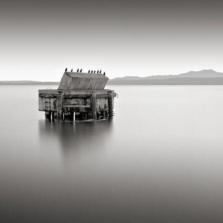 David Fokos, 'Ten Cormorants, Port Townsend, Washington', 2002