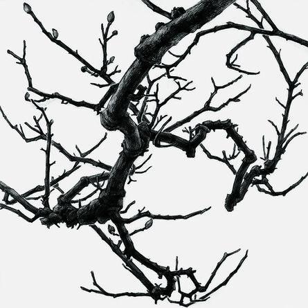 Rieko Hidaka, 'Distance from the Sky XV(Drawing)', 2017