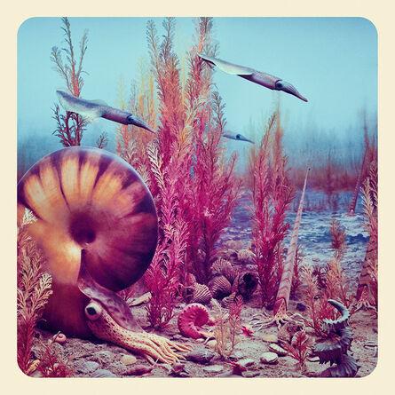 Jim Naughten, 'The Ammonite', 2017