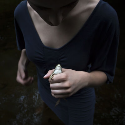 Cig Harvey, 'The Frog, Sierra, Rockport, Maine', 2013