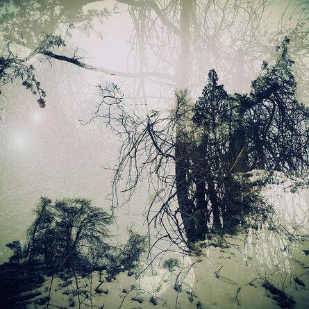 Elena Lyakir, 'Springs from Matter and Light', 2016