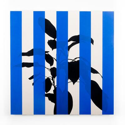 Otto Berchem, 'Dieffenbachia (Blue)', 2016
