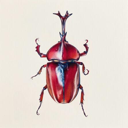 Hannah Hanlon, 'Coleoptera Chroma #23', 2020