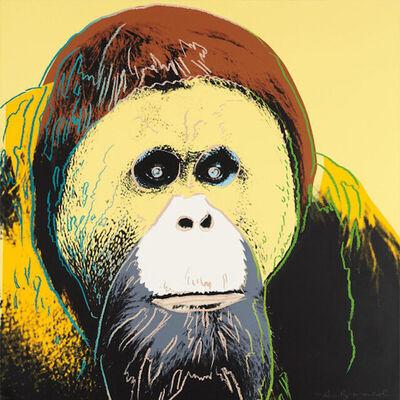 Andy Warhol, 'Orangutan', 1983