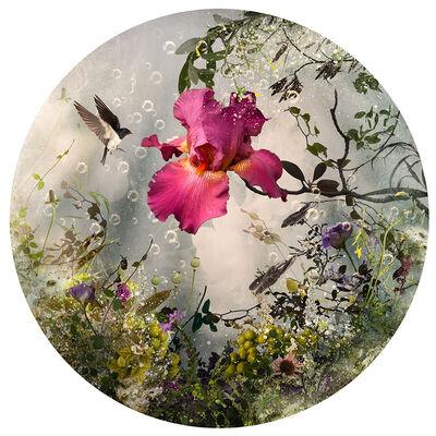 Ysabel Lemay, 'Arcadia'