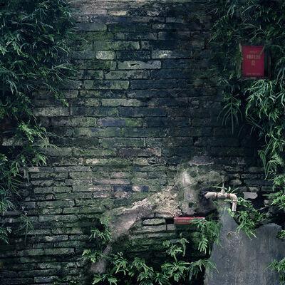 Dubravka Vidović, 'Shikumen's walls series # 19', 2014
