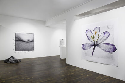 Brigitte Lustenberger; An Apparition of Memory