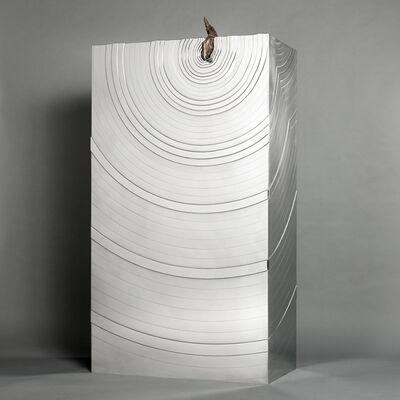 Erwan Boulloud, 'Meteorite, Cabinet', 2016