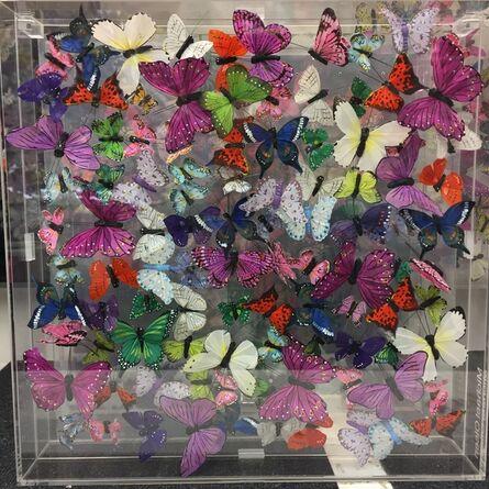 Michael Olsen, 'Butterflies', 2019
