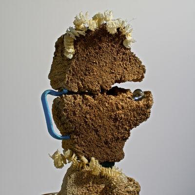 Alejandro Pérez Falconi, 'From the Series: Pequeños monstruos de playa, El Comelotodo  (The One who eats everything)', 2014